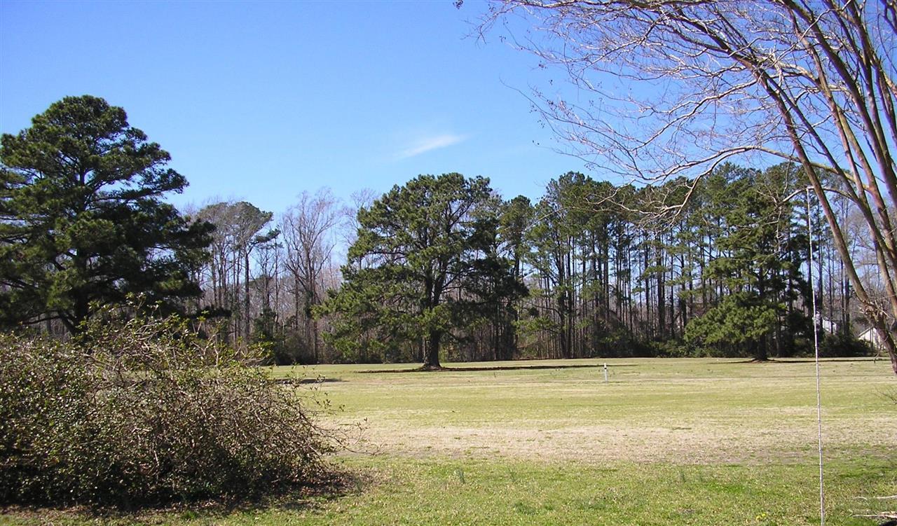 Carolina Pines Golf Course in New Bern NC