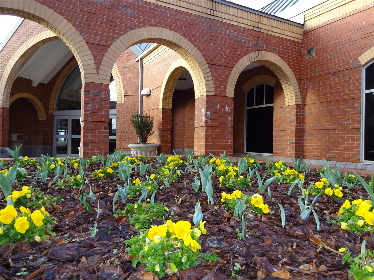 Springtime at the Civic Center in downtown Statesville, NC #civiccenter #statesville #nc #downtownstatesville
