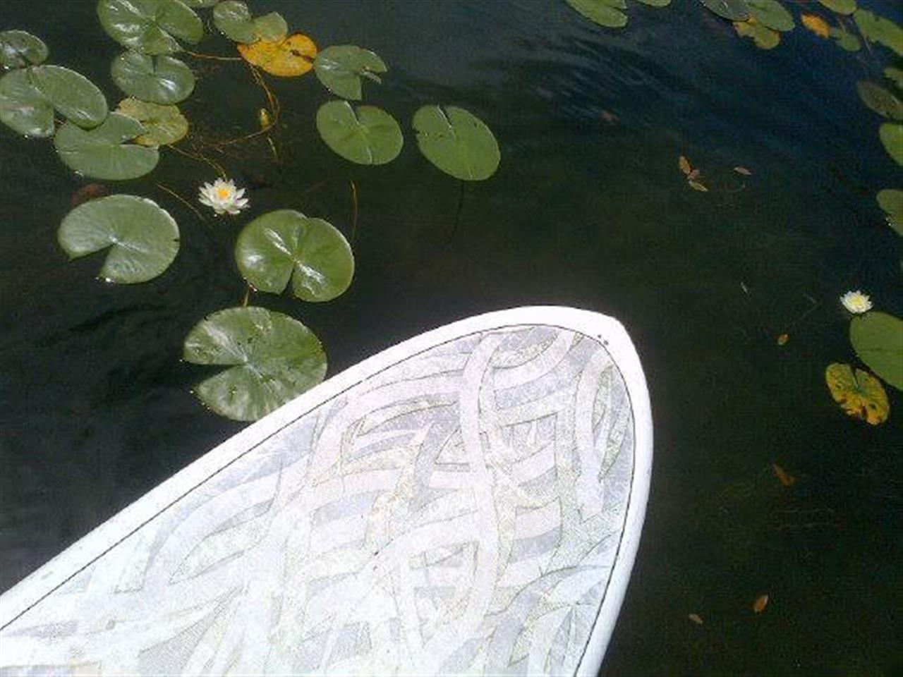 Paddleboarding on Orchard Lake ~ Orchard Lake, Michigan #LeadingRElocal #OrchardLake #Michigan