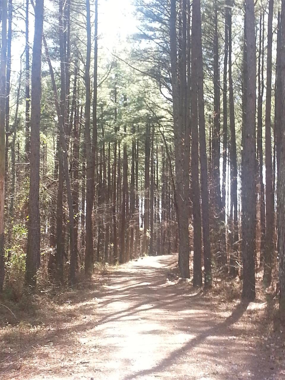 The path taken, Bostic, NC.