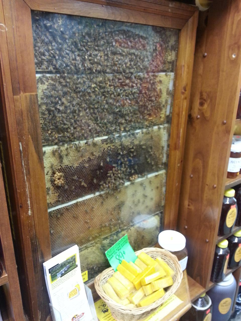 Bee hive in Country Store, Lancaster, PA