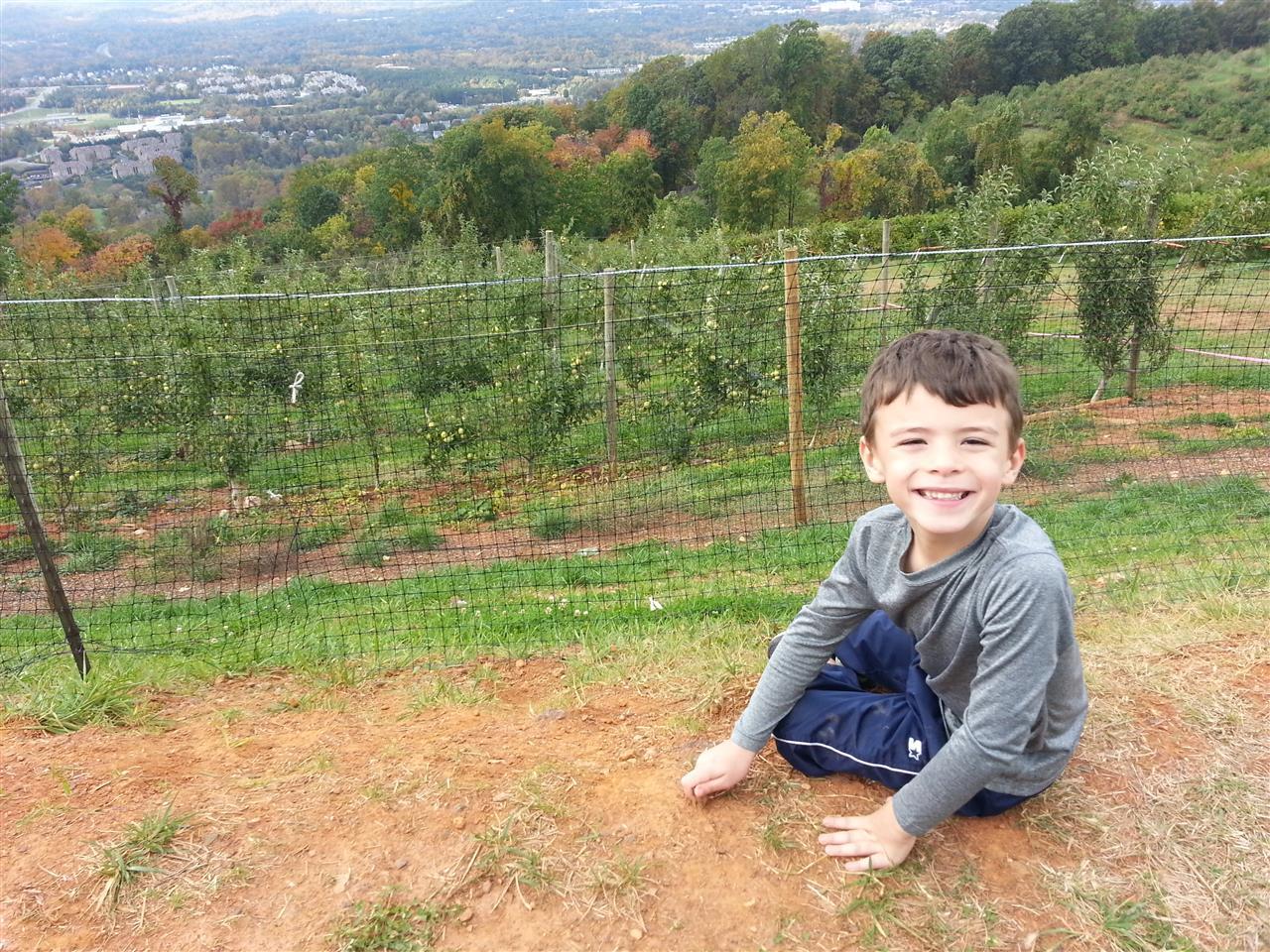 Carters Mountain Orchard, Charlottesville VA