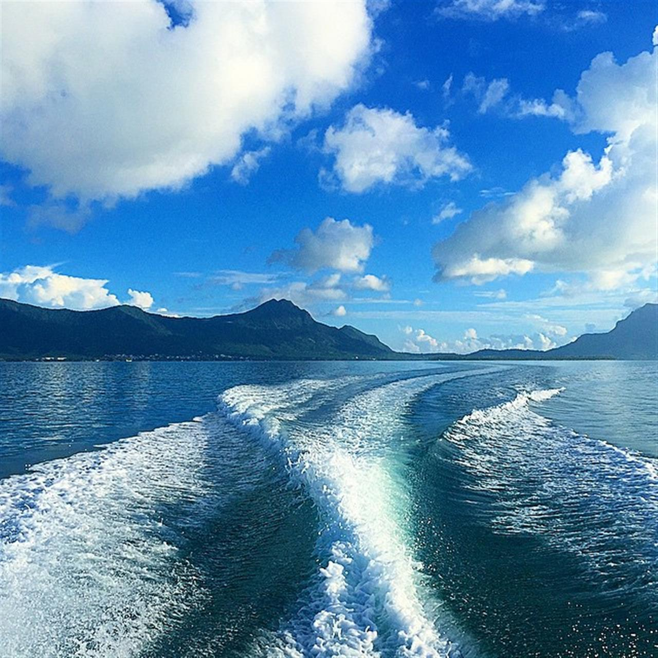 #speedboat #mauritius #lagoon #LeadingRelocal