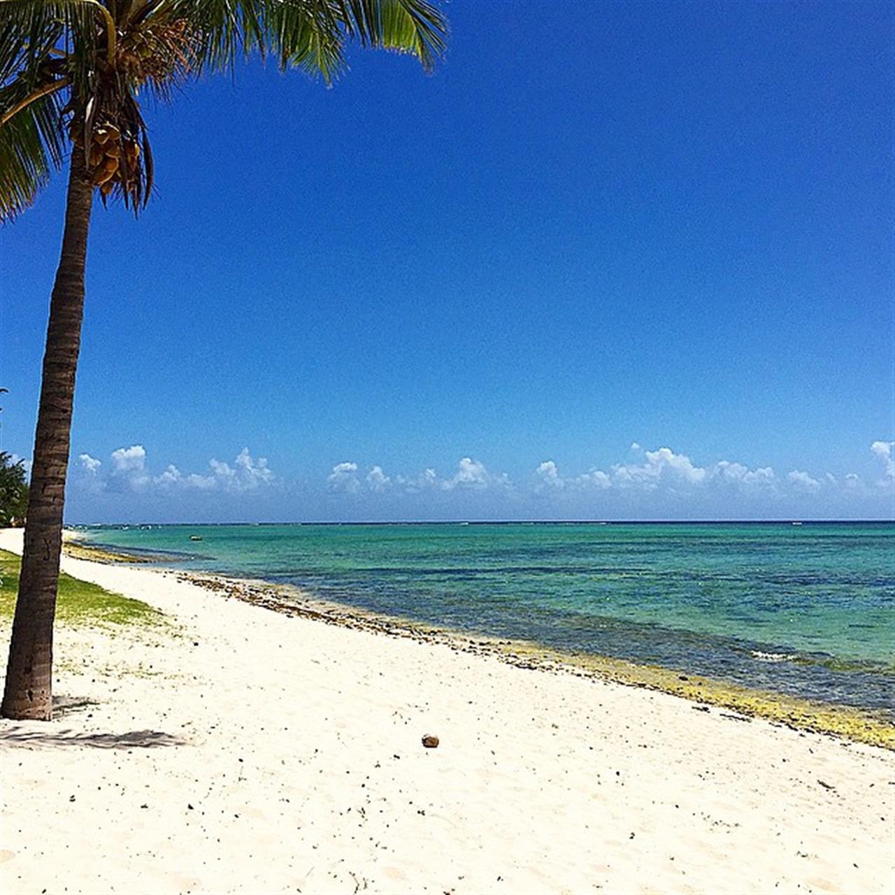 #mauritius #whitesandbeach #beach #LeadingRelocal