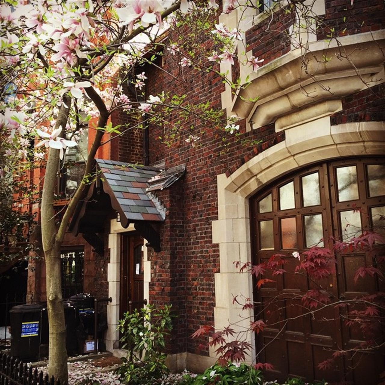 Magnolias in #parkslope #ExploreYourHood #LeadingRElocal
