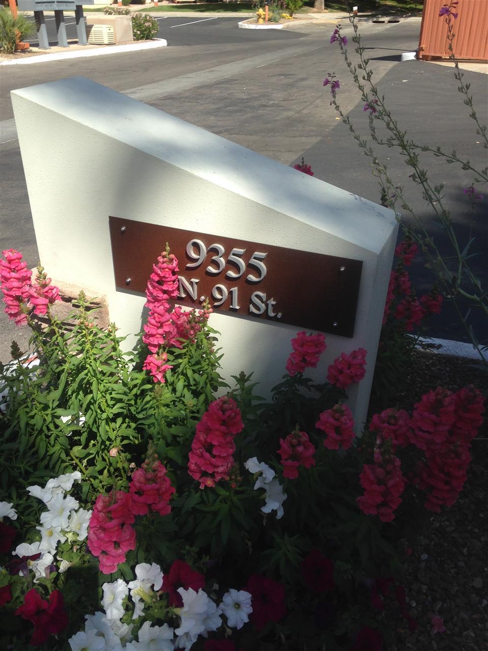 Spring Scottsdale AZ