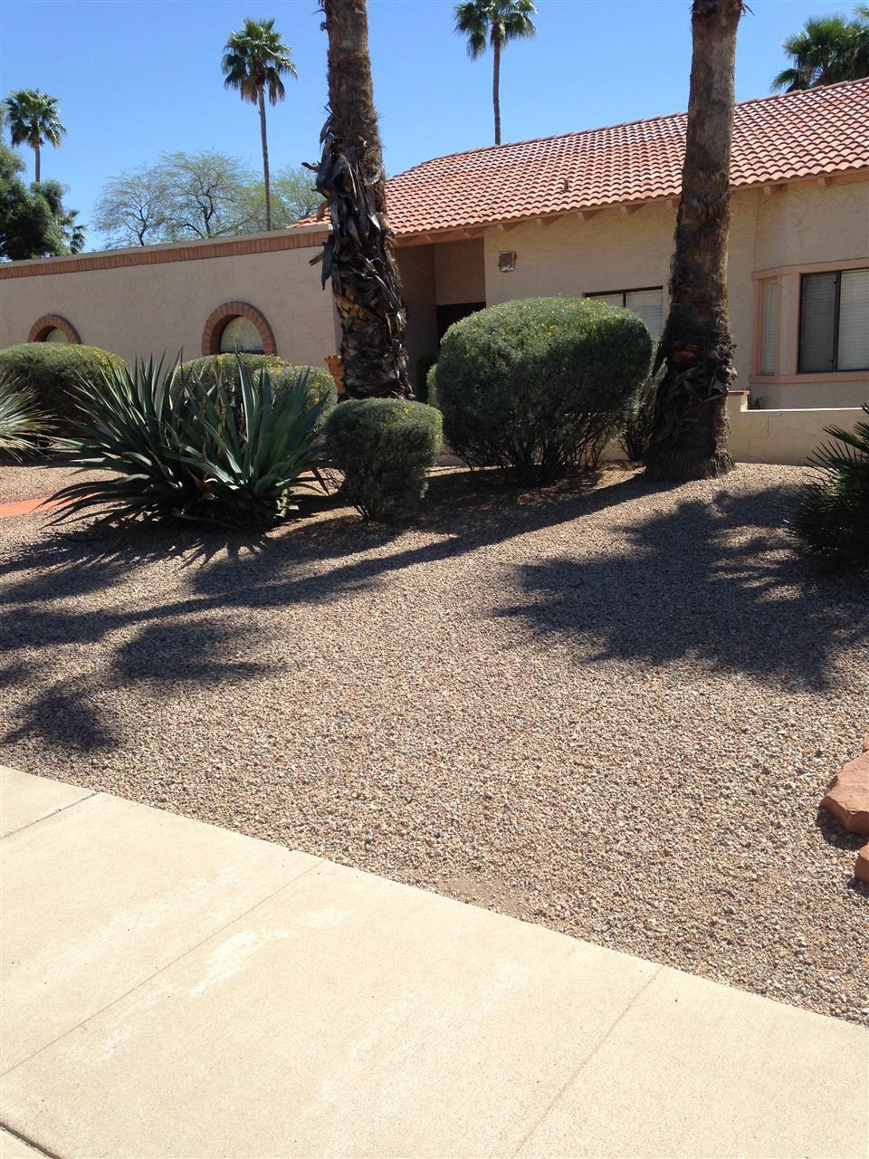 Home in Scottsdale AZ