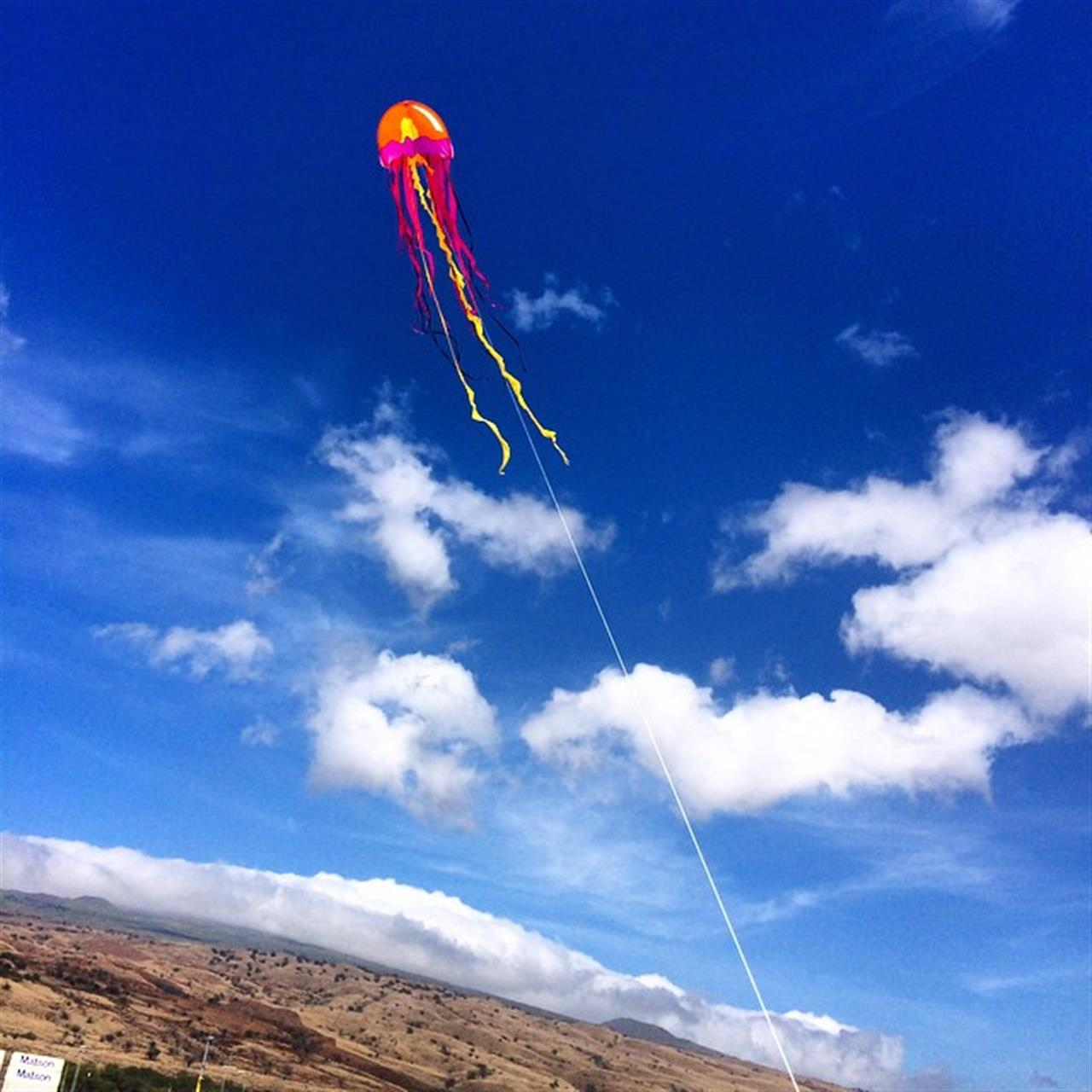 Flying kites at the beach today! #likealittlekid #beingbrooke #hawaiilife #beemary #LSD #leadingRElocal