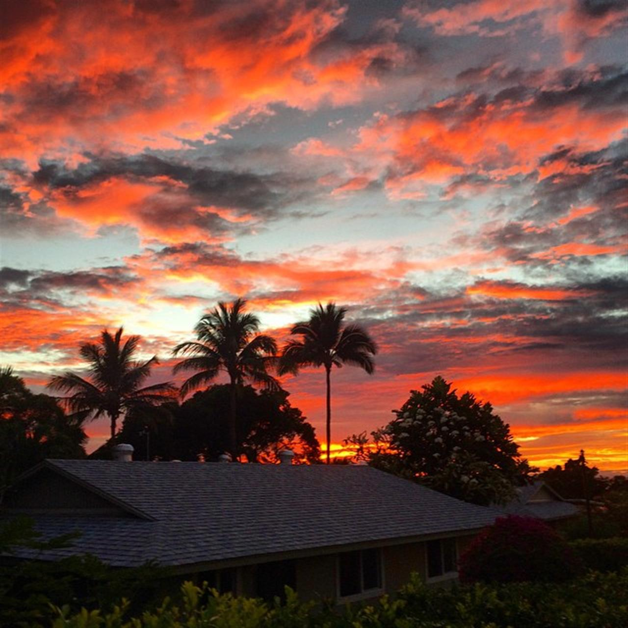 And ended my evening with this beauty of a sunset celebrating the lovely @puako_girl's Birthday! Love you Bernice! ?? #kohalacoast #HNNSUNRISE #beemary #beingbrooke #kawaihae #leadingRElocal