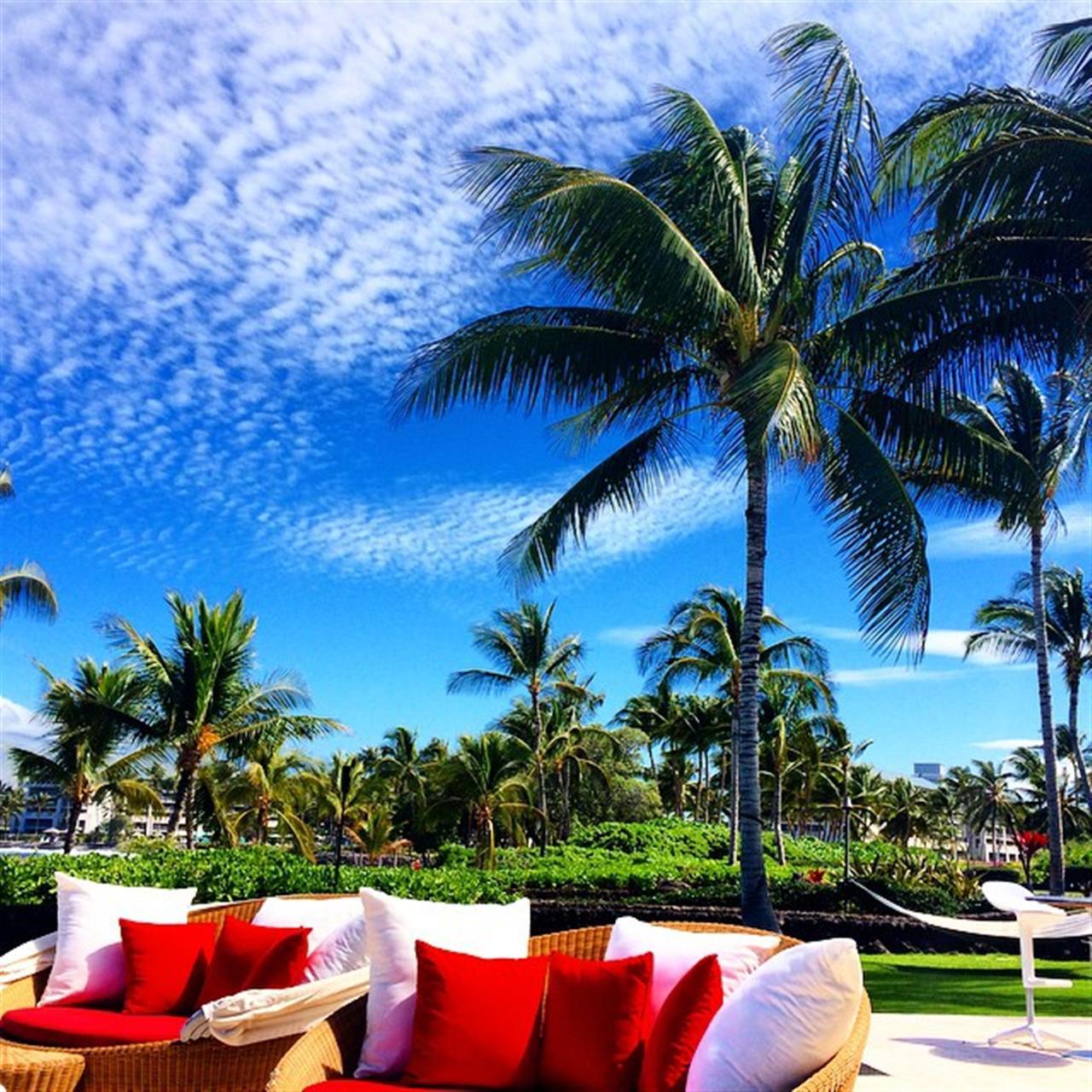 It's a beautiful day on the Kohala Coast! ??Love is in the air! ?? #happyALOHAfriday #fridaythe13th #beingbrooke #hawaiilife #beemary #maunalani #leadingRElocal