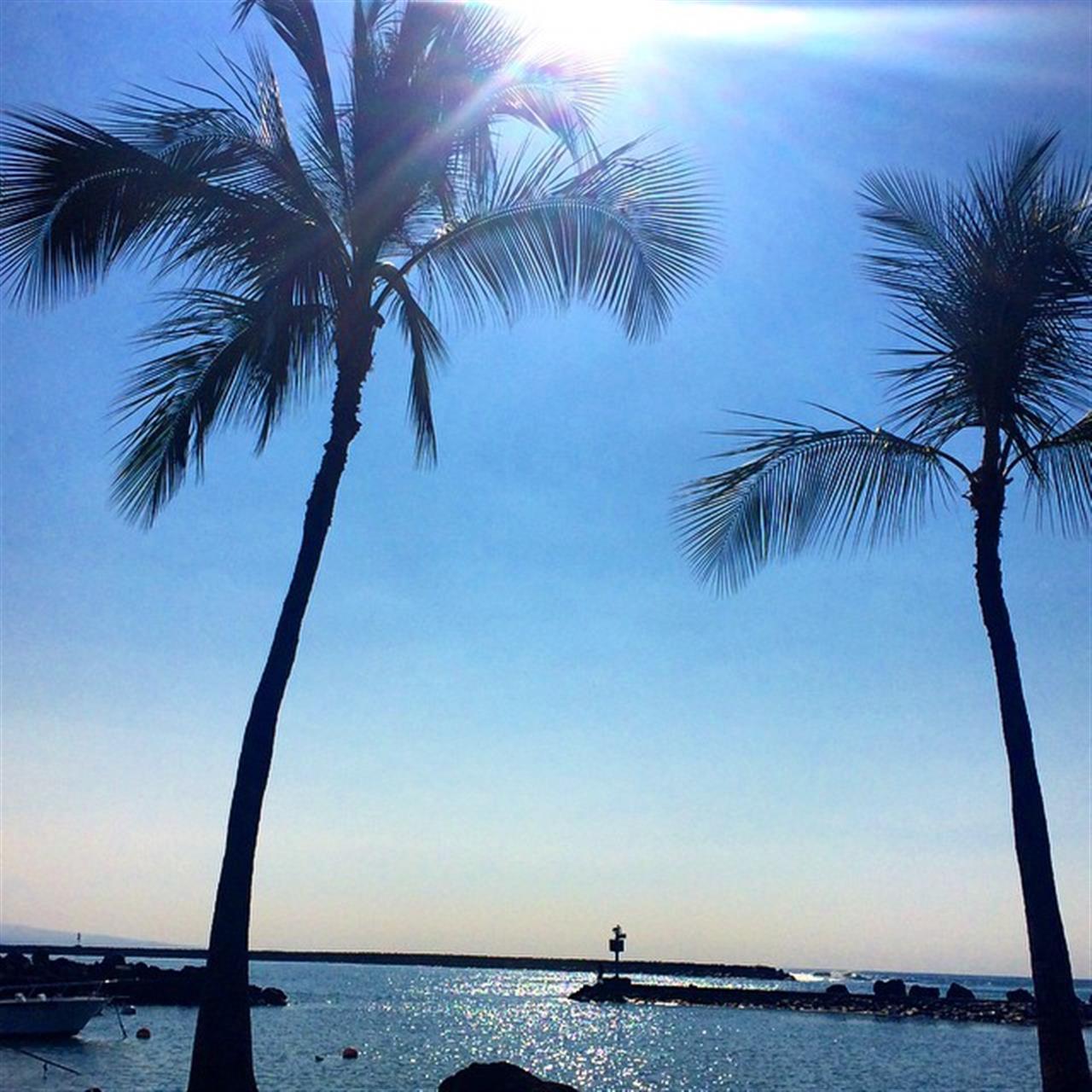 Beautiful day on the Kohala Coast! ??? #beingbrooke #hawaiilife #glimpseofhawaii #wearehawaii #hawaiistagram #HNNSunrise #leadingRElocal