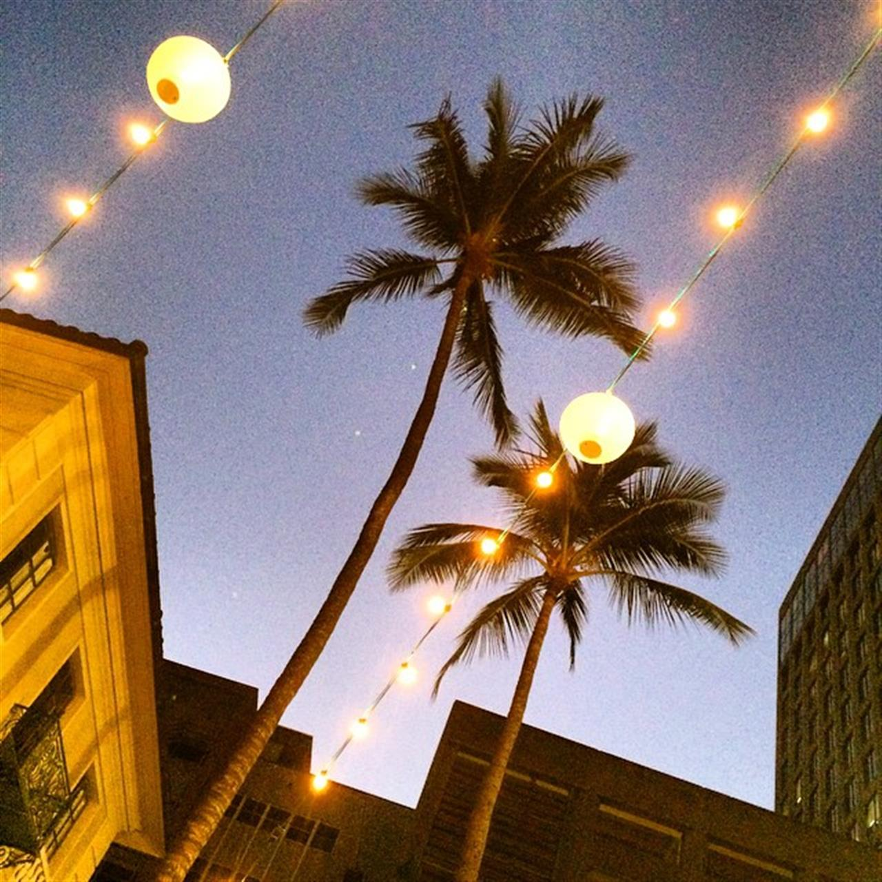 Honolulu City lights! This little farm girl is loving her city time! ?????? #beingbrooke #hawaiilife #oahulife #leadingRElocal