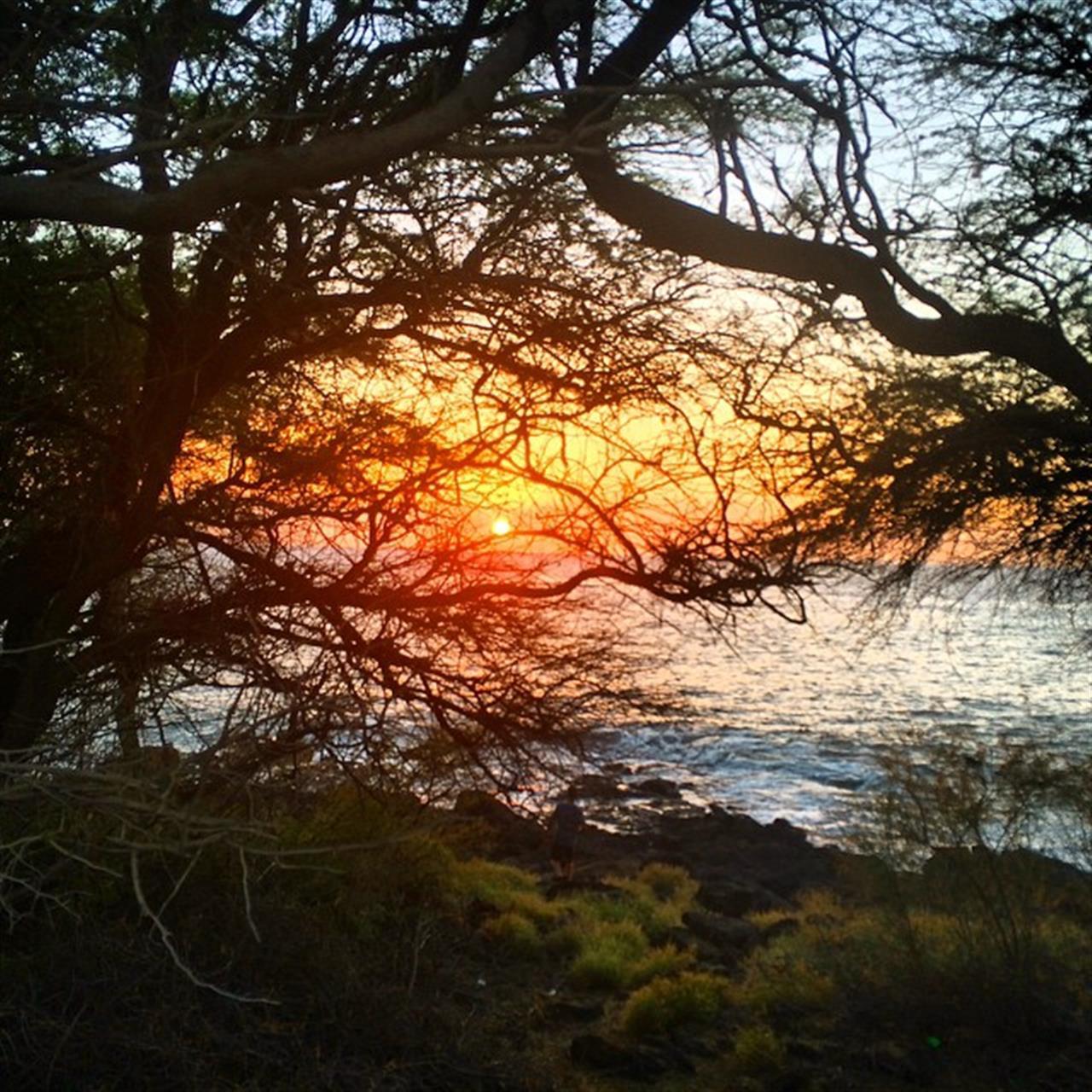 #humpday sunset on another beautiful Hawaii day! #beSunny #HawaiiLife #glimpseofhawaii #wearehawaii #hawaiistagram #HawaiiNewsNow #sunsetaday #365hawaiisunset #instahub #010715 #leadingRElocal