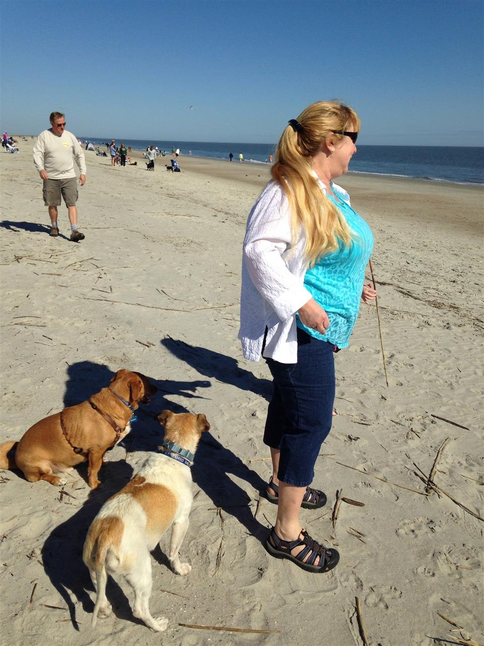 Hilton Head Island SC , family with rescue dogs enjoy the beach for Valentines Day