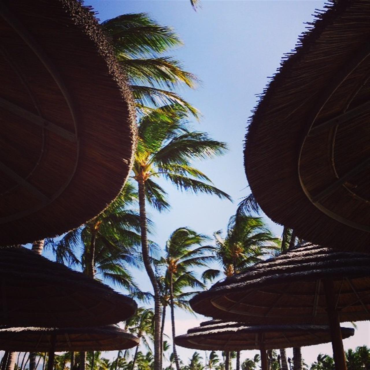 Always sunny on the Kohala Coast of the Big Island!  #Kohala #bigisland #hawaii #leadingrelocal  #??? #???? #??????