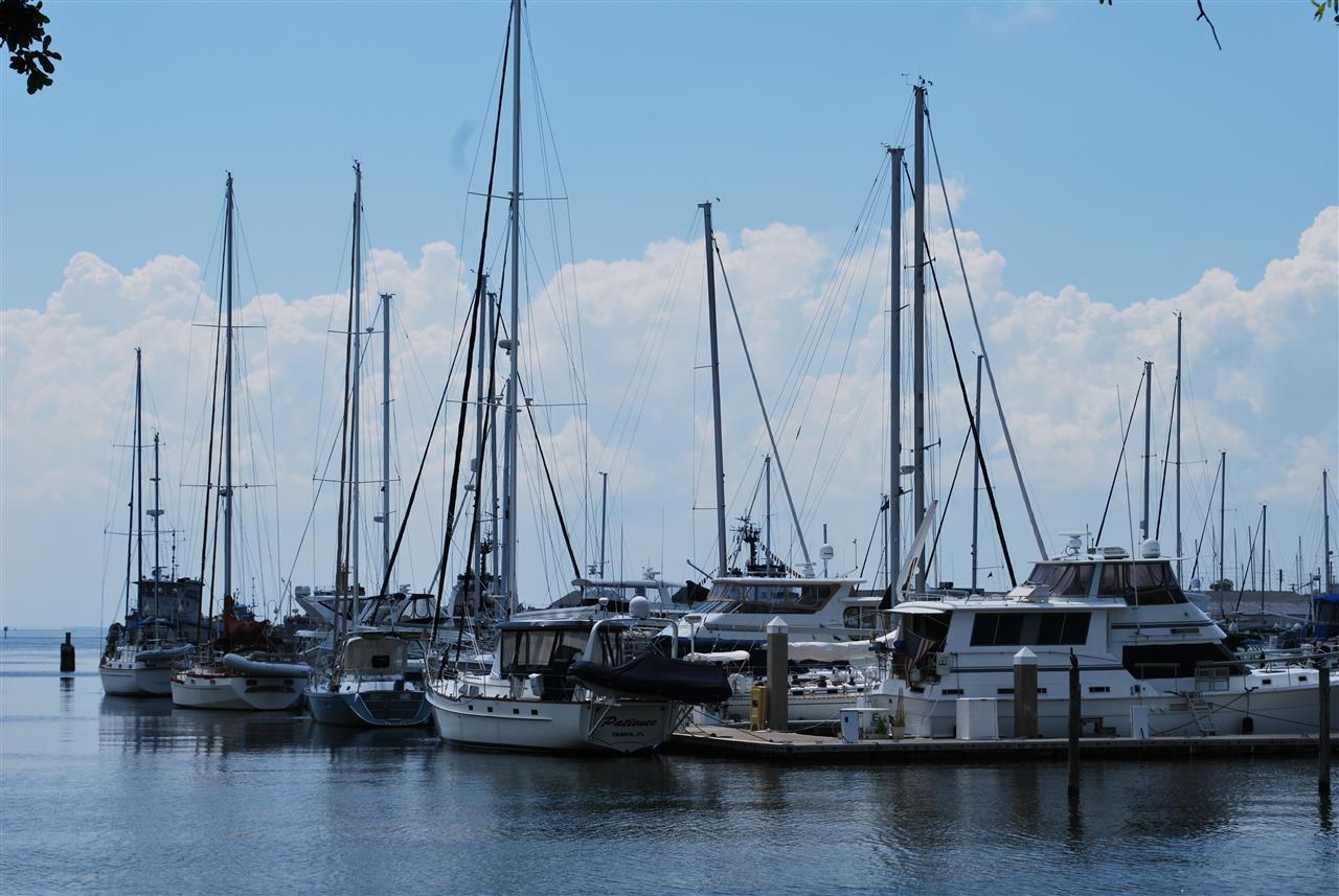 Pier. Tampa/St. Pete, Florida.