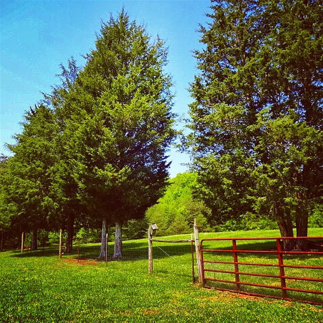 New listing! Lake Forest Drive Pfafftown. 17+ rolling acres. Really beautiful! $324,900 #minifarm #LeadingRElocal