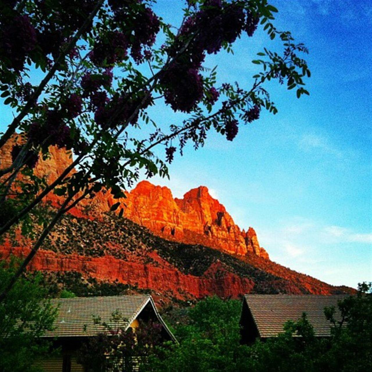 Take advantage of spring in Southern Utah!
