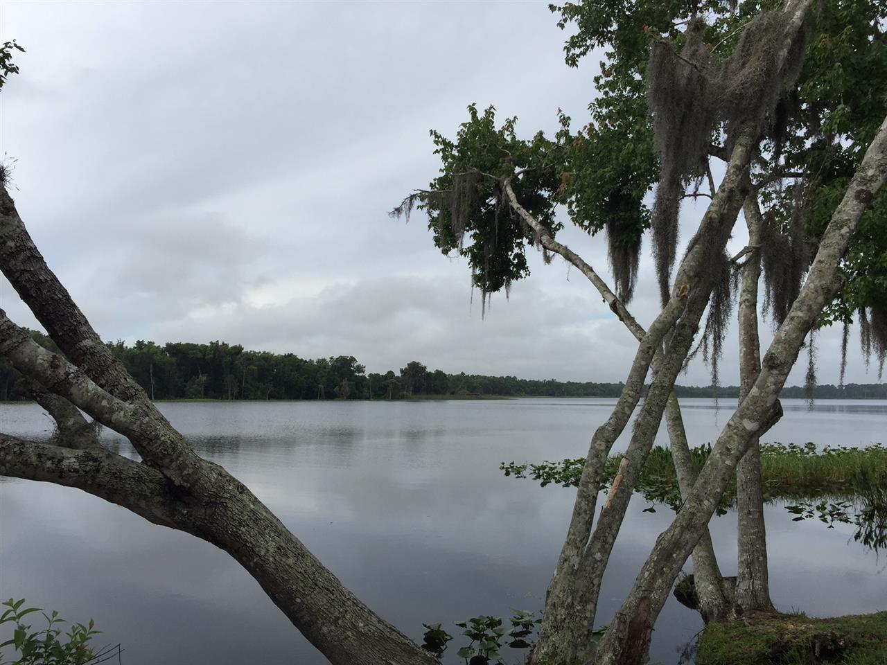 #Deland, FL #Lake Dias