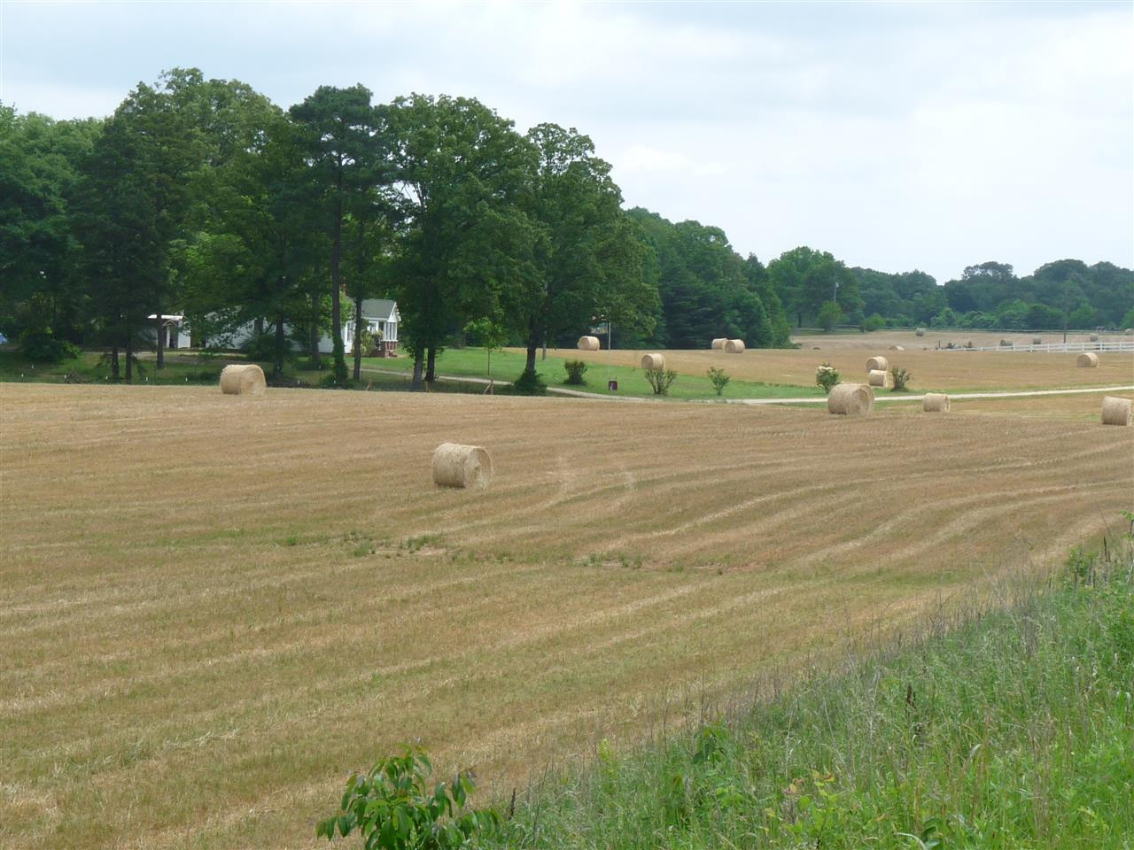 #Hay Fields #Fort Mill, SC