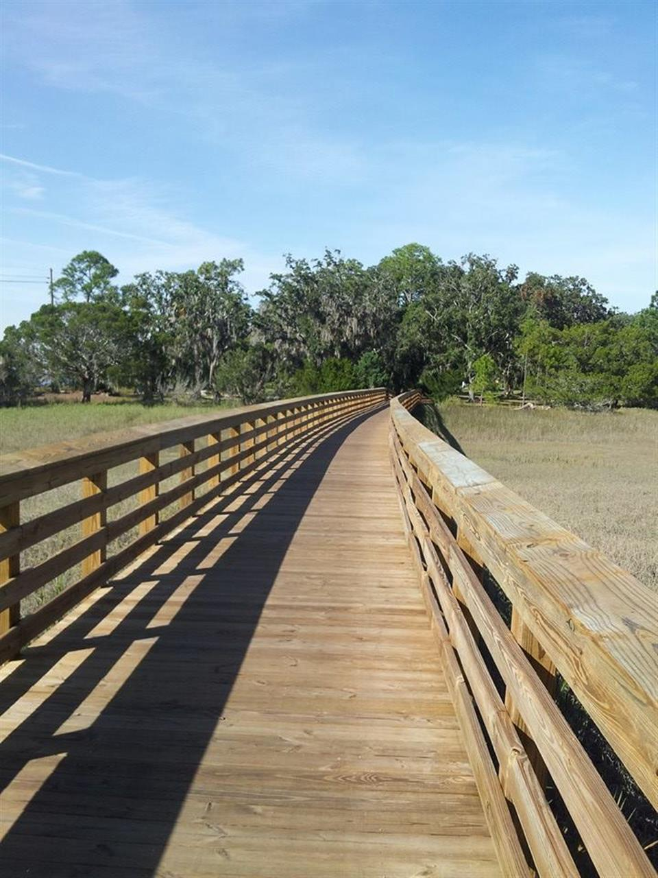 Bike paths winding through marshes of Jekyll Island.