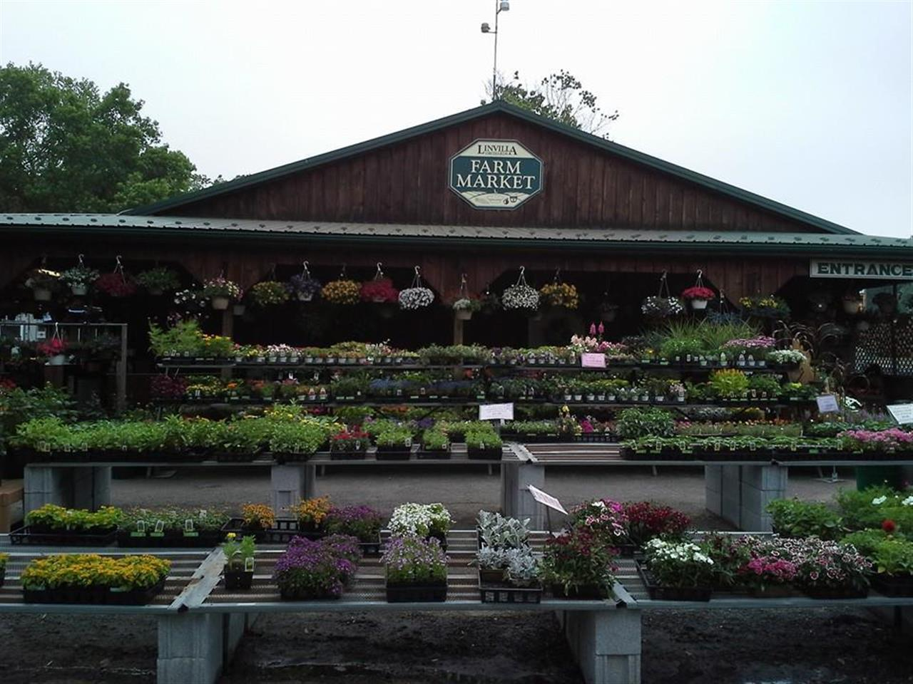 Linvilla Orchards 137 W. Knowlton Road  Media, PA 19063 Where family traditions begin! Hayrides, marshmallow roasting by the bonfire, holiday events, apple cider, festivals, pony rides, kids play area, picnicking, food, fun & so much more!