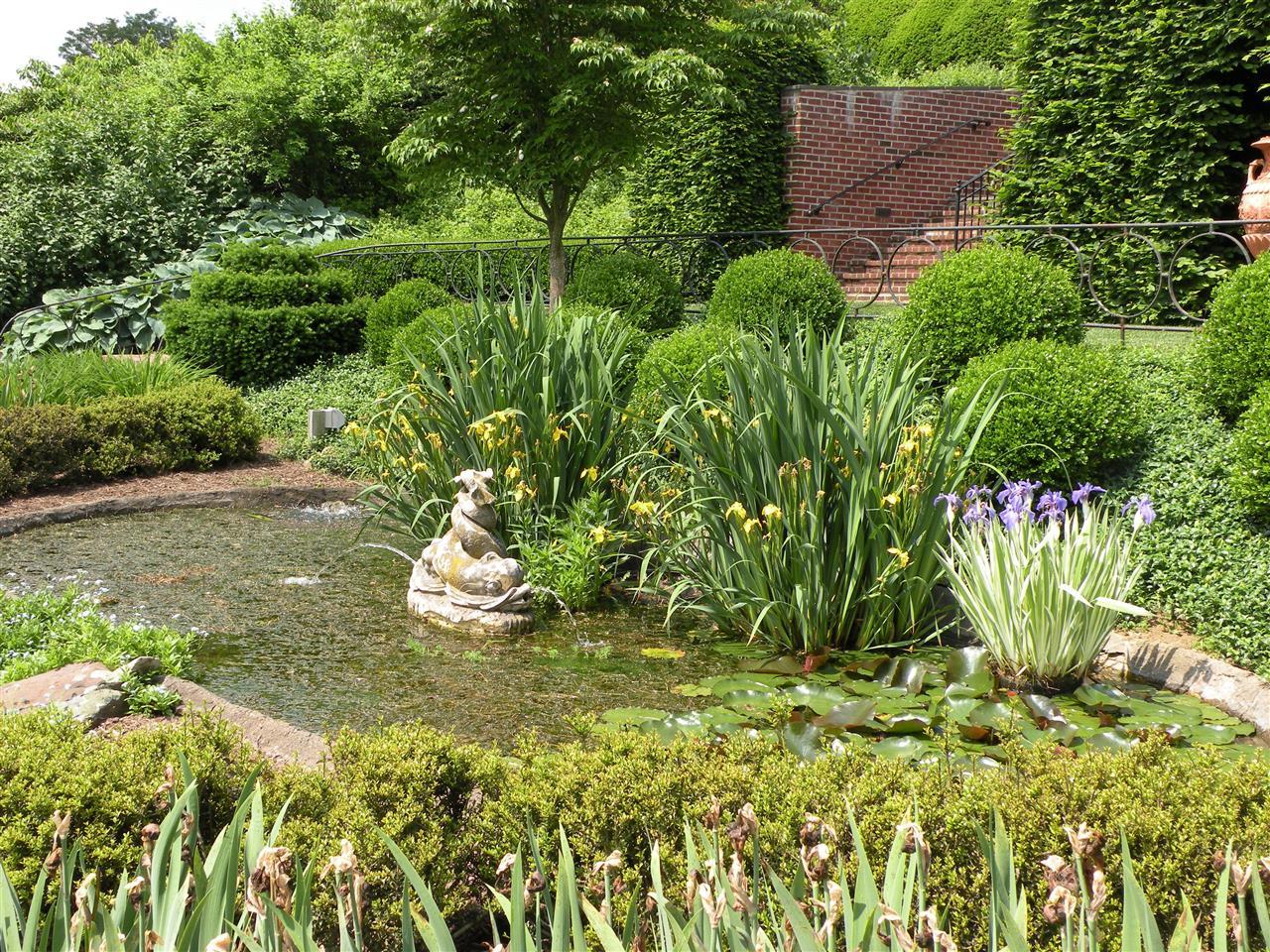 iris pond at Ladew Topiary Garden, Monkton, MD