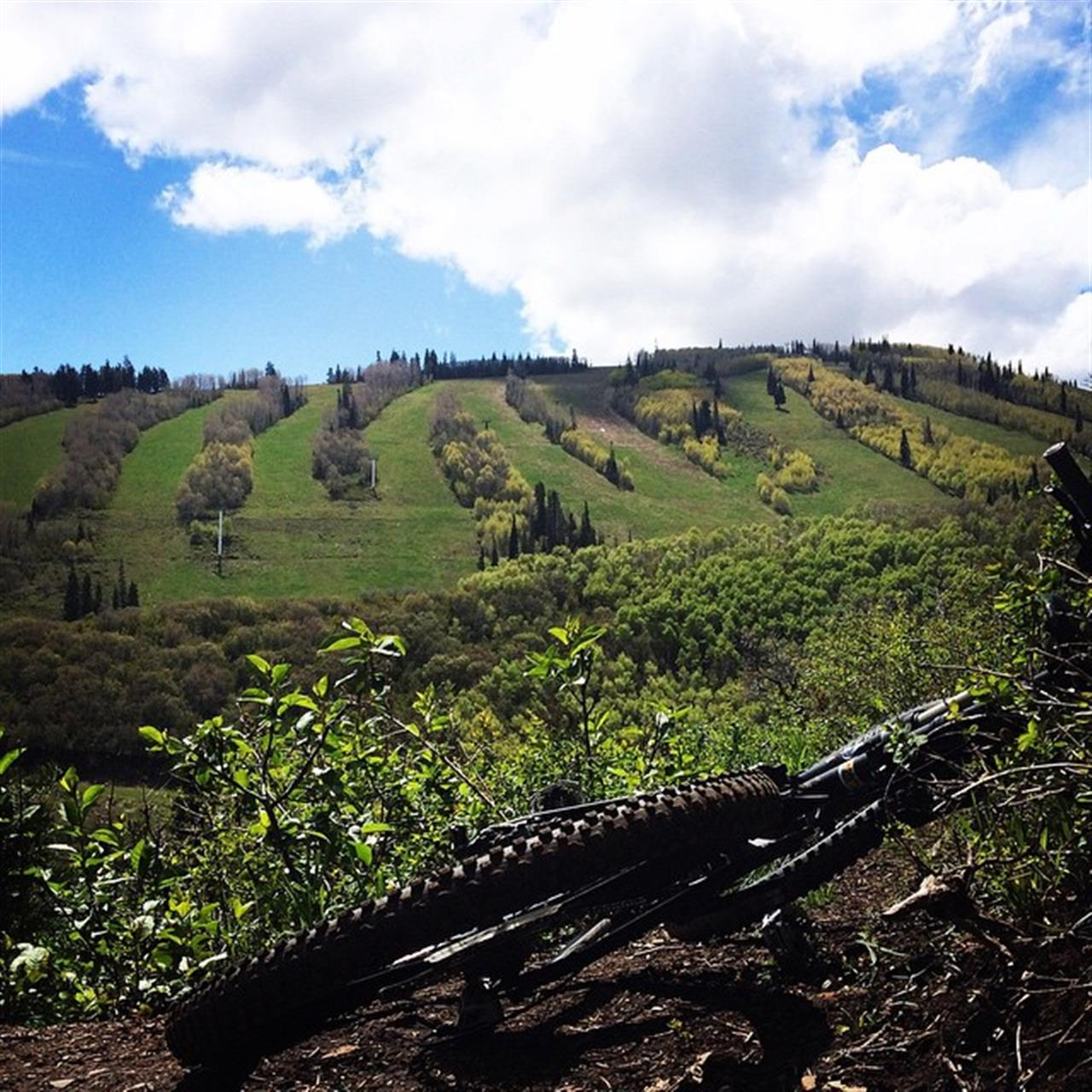 This rain has been treating the dirt well! The view from our ride today up Armstrong! #parkcity #slc #mtb #leadingrelocal #mountainbike @pcski