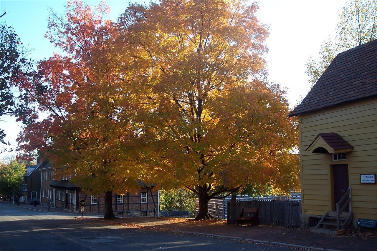 Old Salem, Winston-Salem, NC