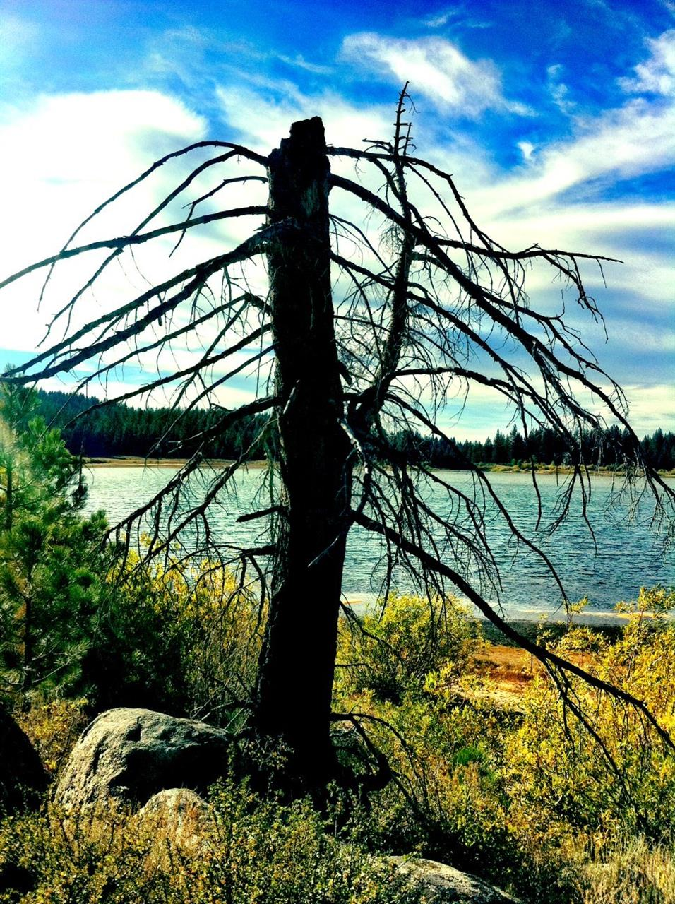 #Lake Tahoe, NV #Spooner Lake
