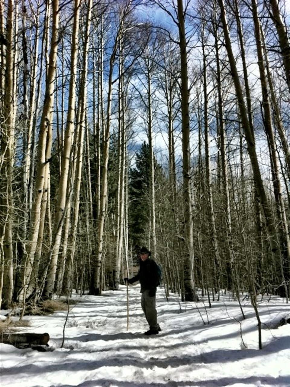 #Lake Tahoe #Spooner Lake #Snow Shoe Hike