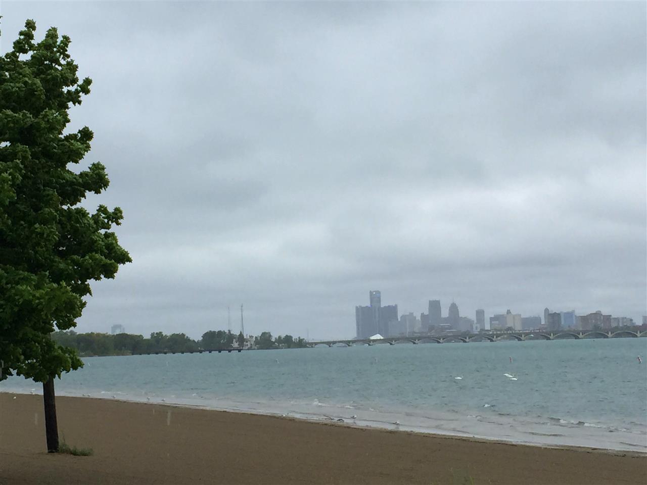 Rainy day Detroit skyline from Belle Isle~ Detroit, Michigan #LeadingRElocal #Detroit, #Michigan