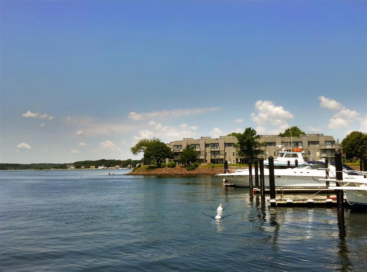 Seaview Island, Shark River Hills, Neptune,  New Jersey View From Belmar Marina