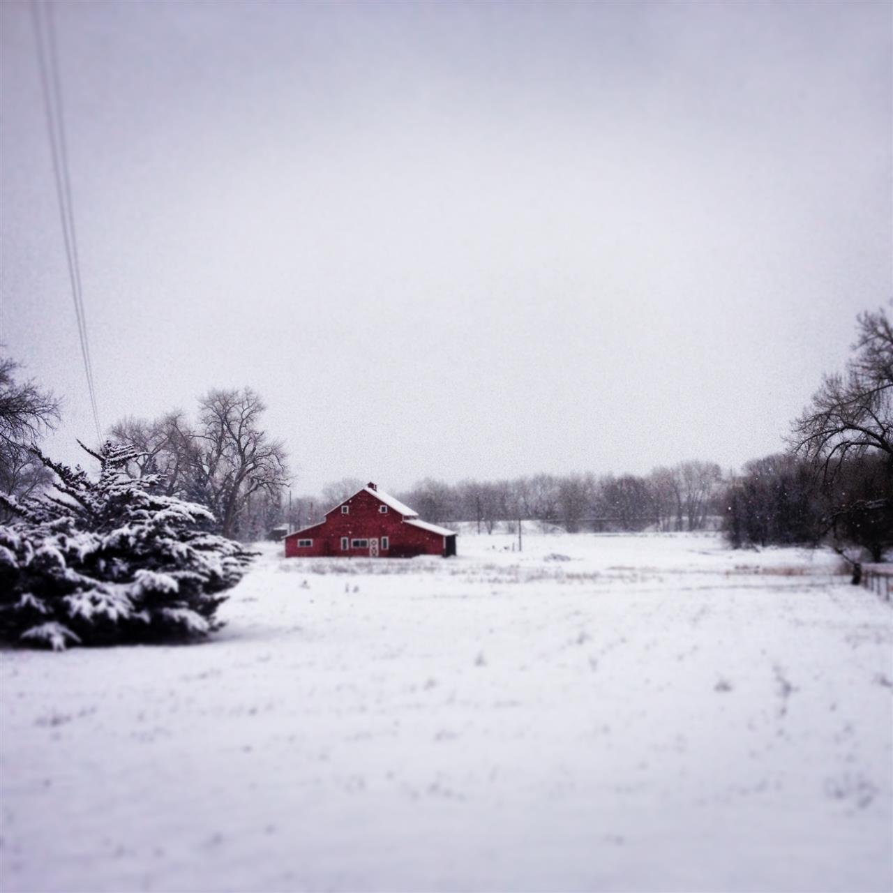 Snowy Barn, Louisville, CO