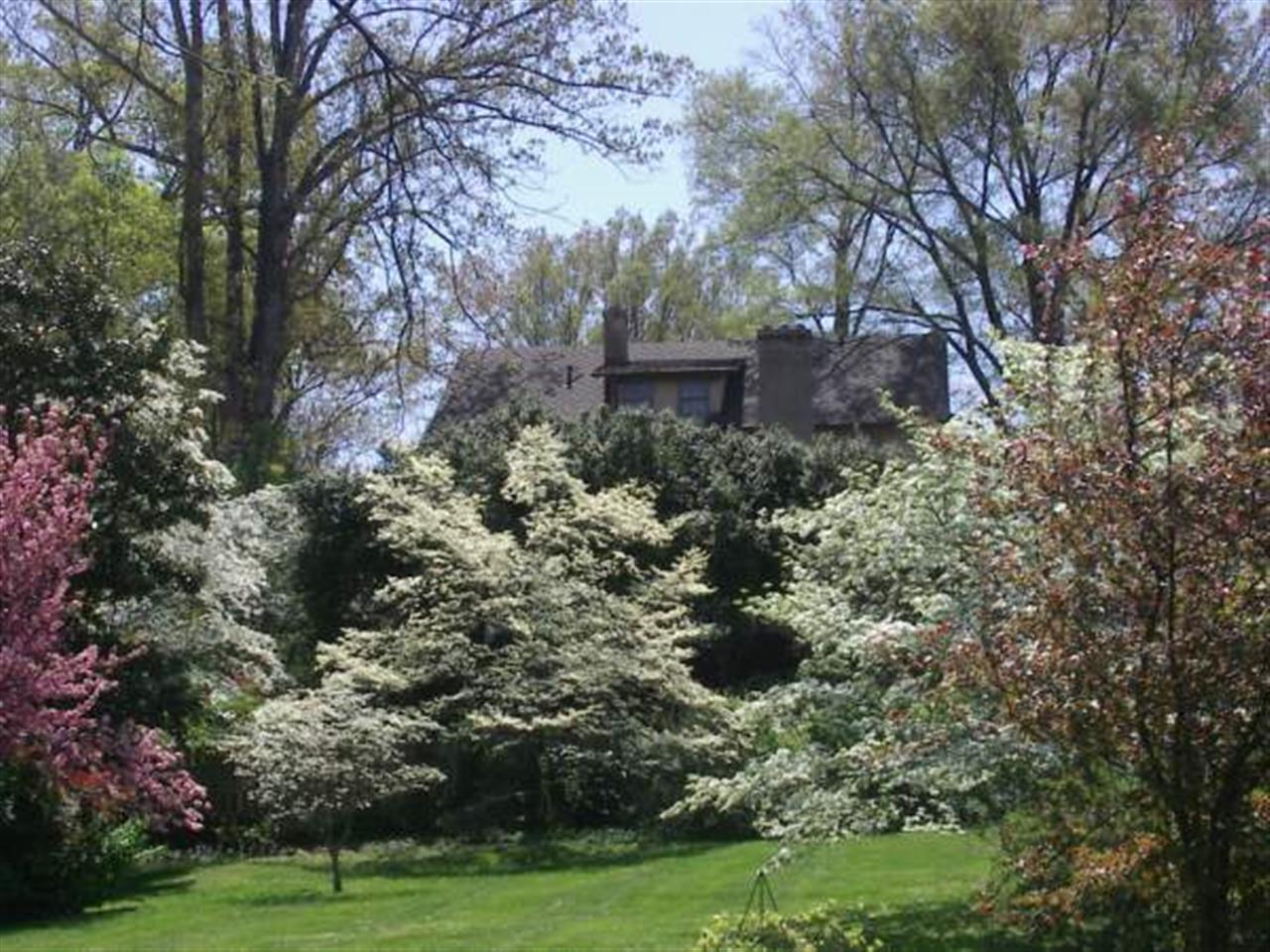Spring in Washington Park, Winston-Salem, NC