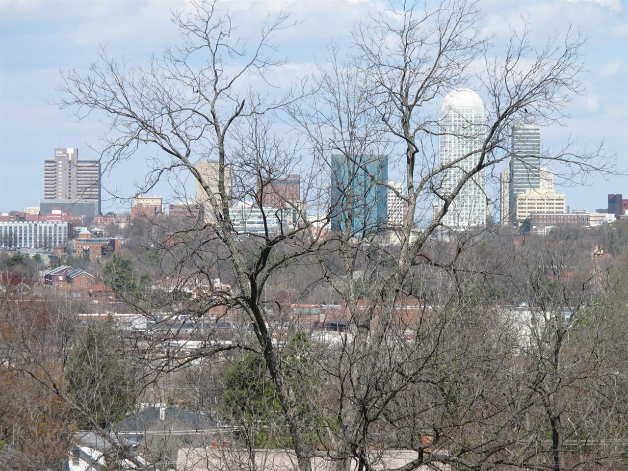 Winston-Salem,NC skyline from Washington Park