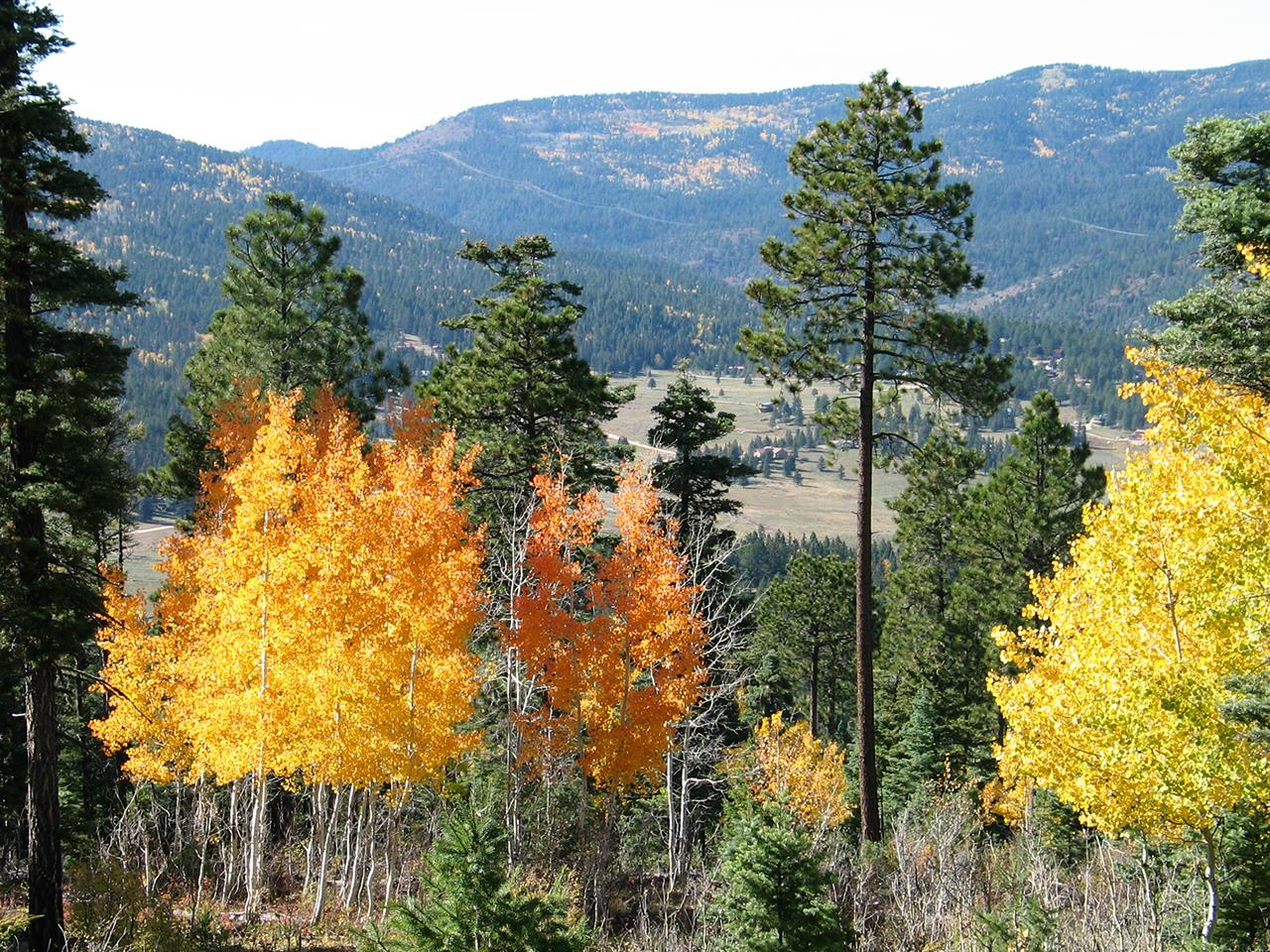 #Taos attractions #Fall Color #Sangre de Christo Mountains #Taos #New Mexico