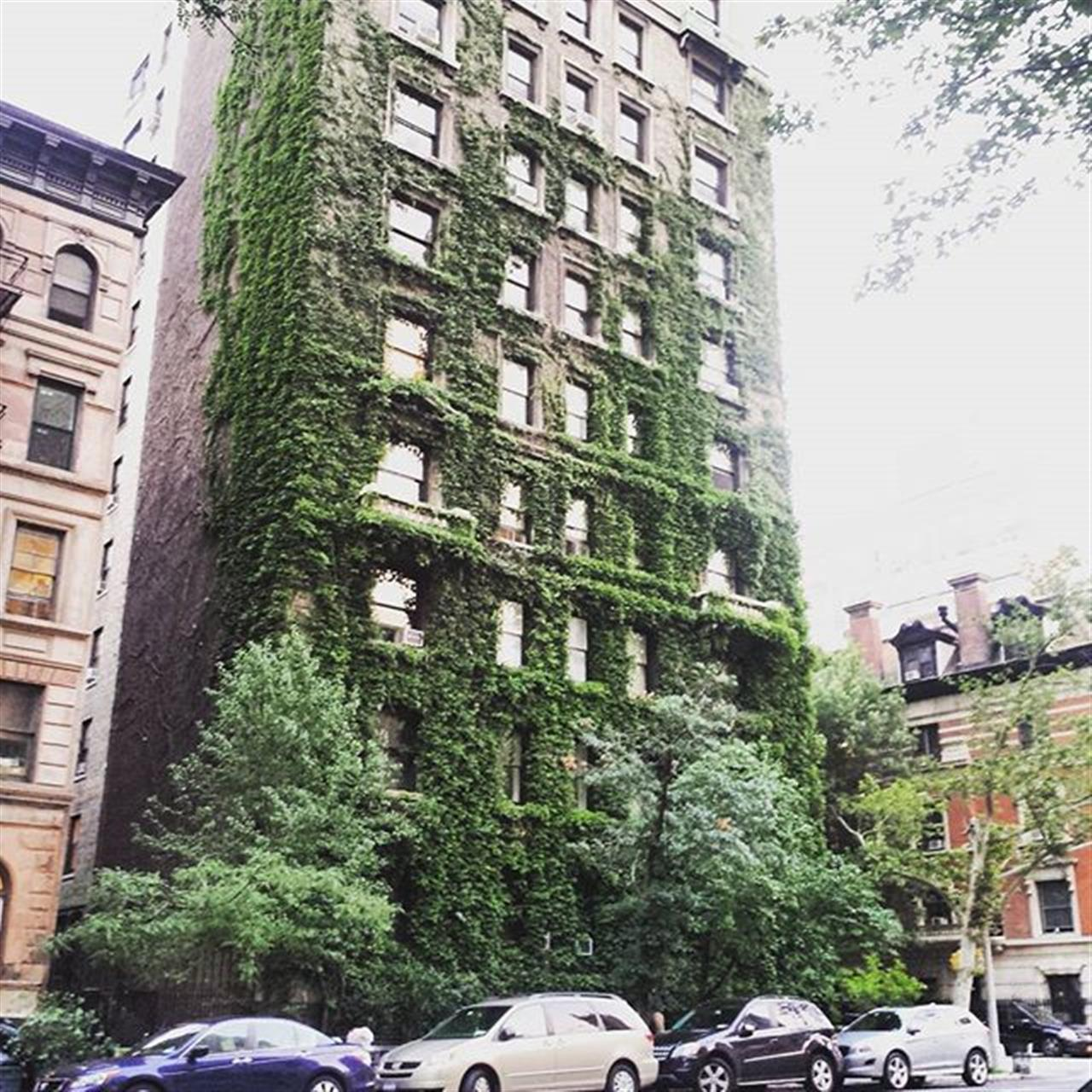 Ivy League... West end Ave and 91st street #ivy #ivyleague #classic #uws #prewar #leadingrelocal