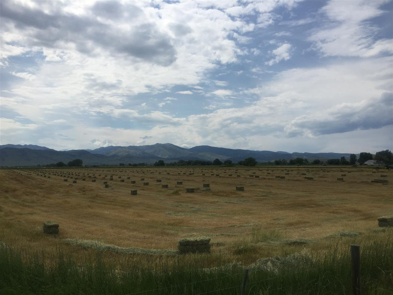 Hay Bales in Boulder County, Longmont, CO