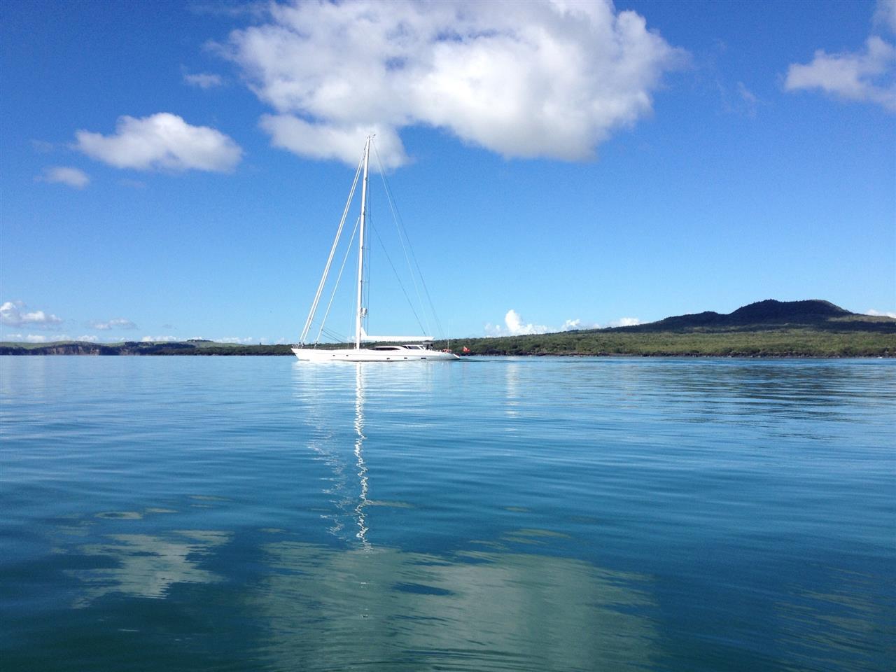 Waitemata Harbour  Auckland, New Zealand #LeadingRElocal