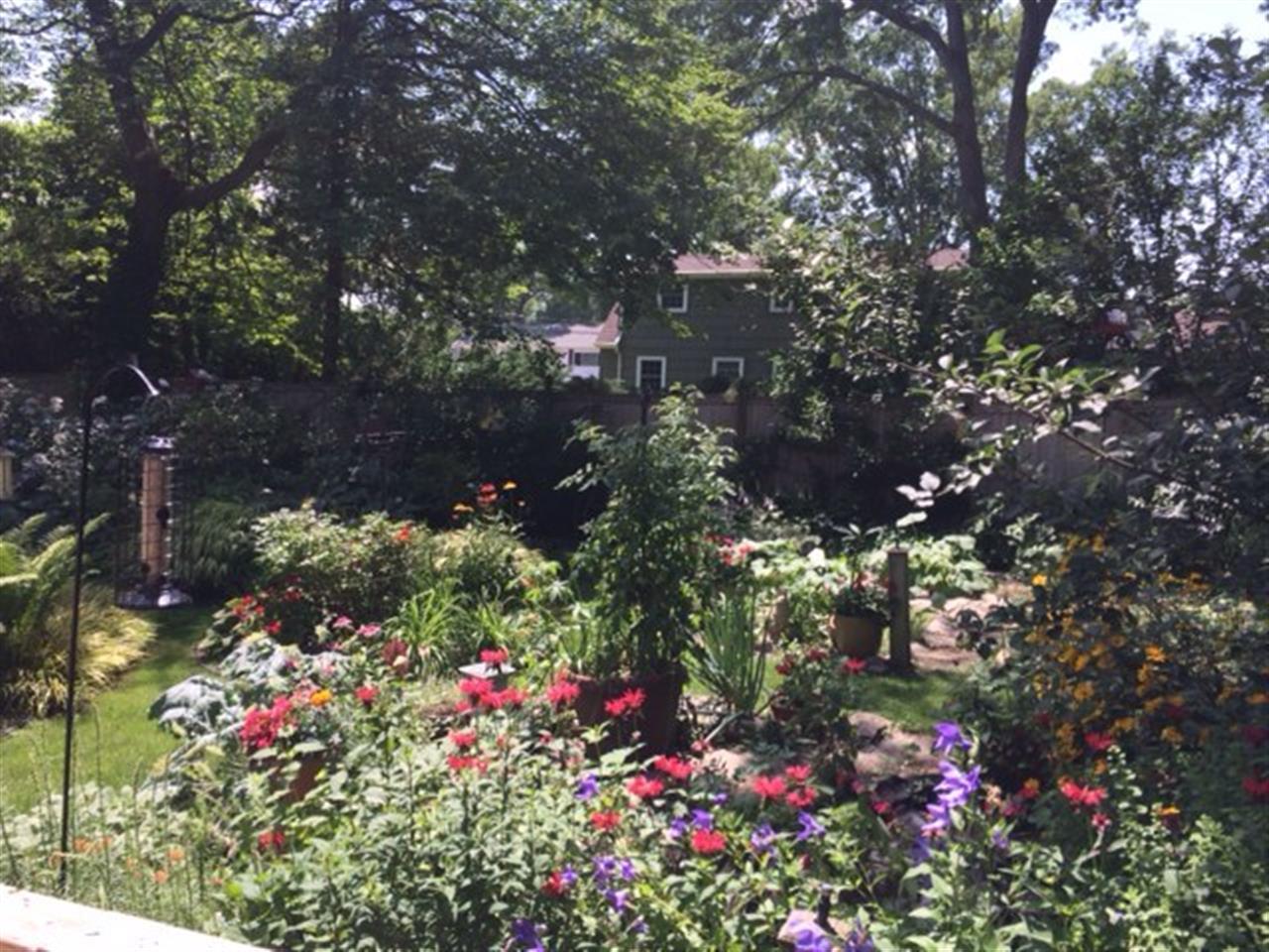 #IreneLockel #NetterRealEstate #LeadingRelocal #Beautiful #Flowers #NetterLovesTheBeauty #LandscapingAtItsFinest #BrightWaters #SouthShore #LongIsland #Nature #BeautifulBackyard