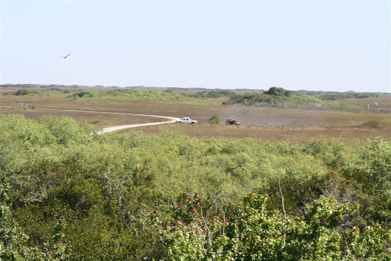 Everglades National Park, #LeadingRELocal #soflo