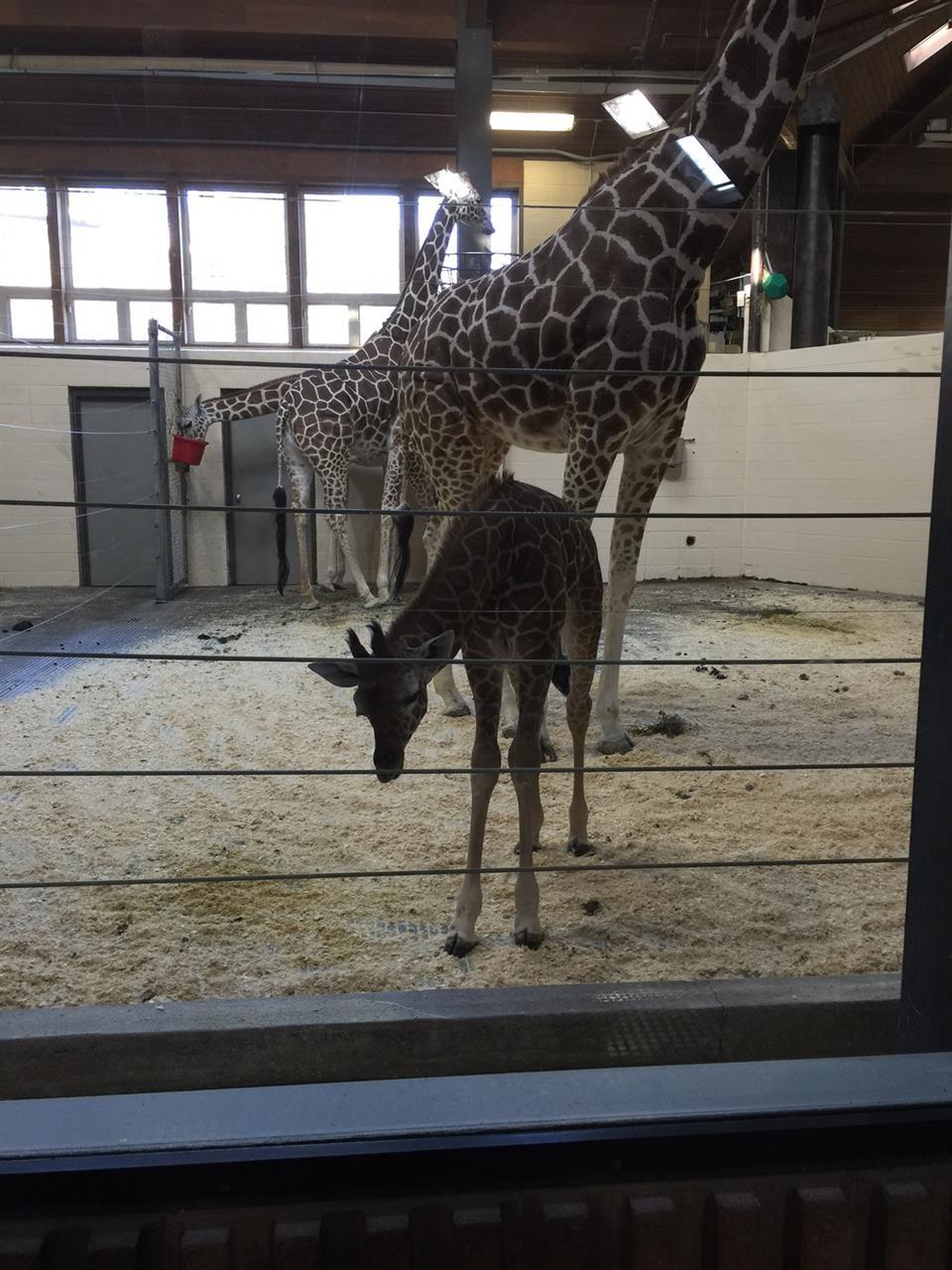 Henry Doorly Zoo Omaha NE