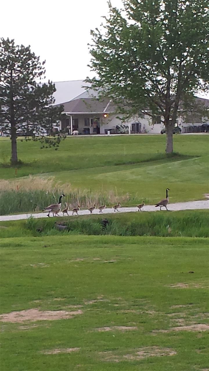 North Bend Golf Course North Bend NE