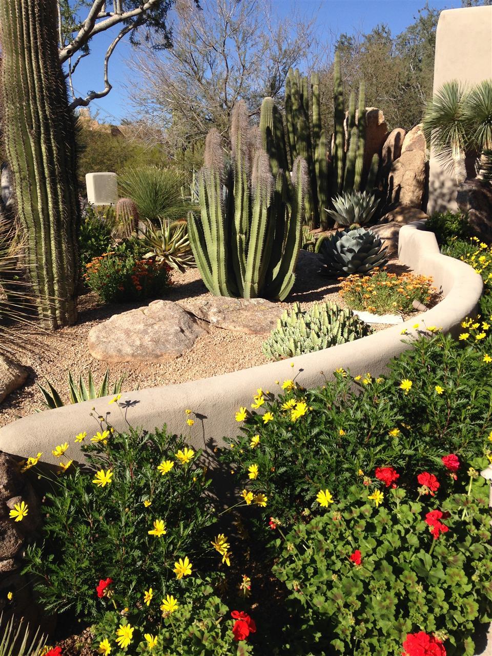 Spring bouquet  Scottsdale, AZ