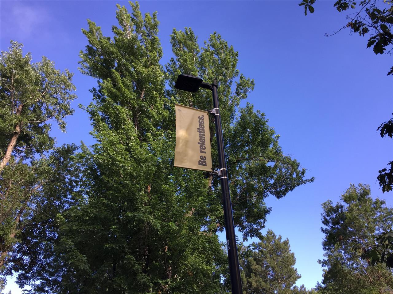 University of Colorado Campus, Boulder, CO