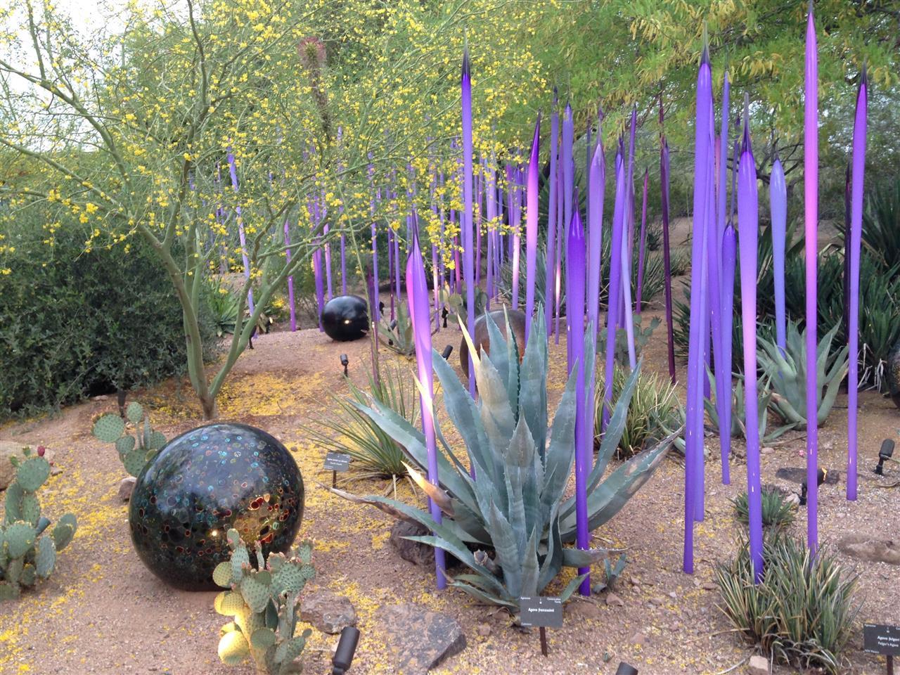Desert Botanical Garden Phoenix, AZ Chihuly Exhibit