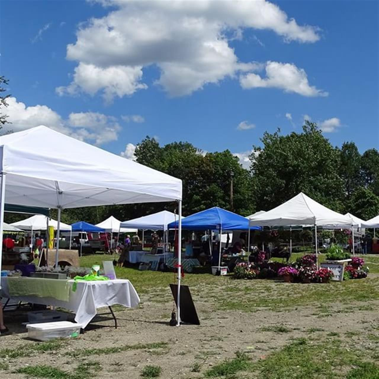 Have you been to the #shrewsburyfarmersmarket ? It is at #skiward on Wednesdays this summer. Great stop to support #local farmers and crafts people.  #farmersmarket #eatclean #eatlocal #buylocal #shrewsburyma #leadingrelocal #realestate