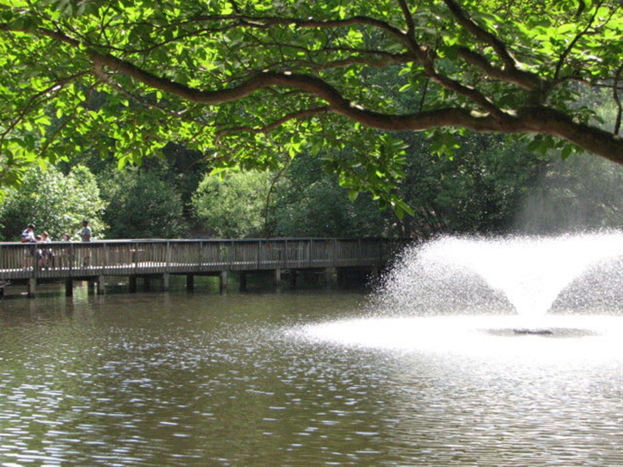 Memorial Park, Athens, GA
