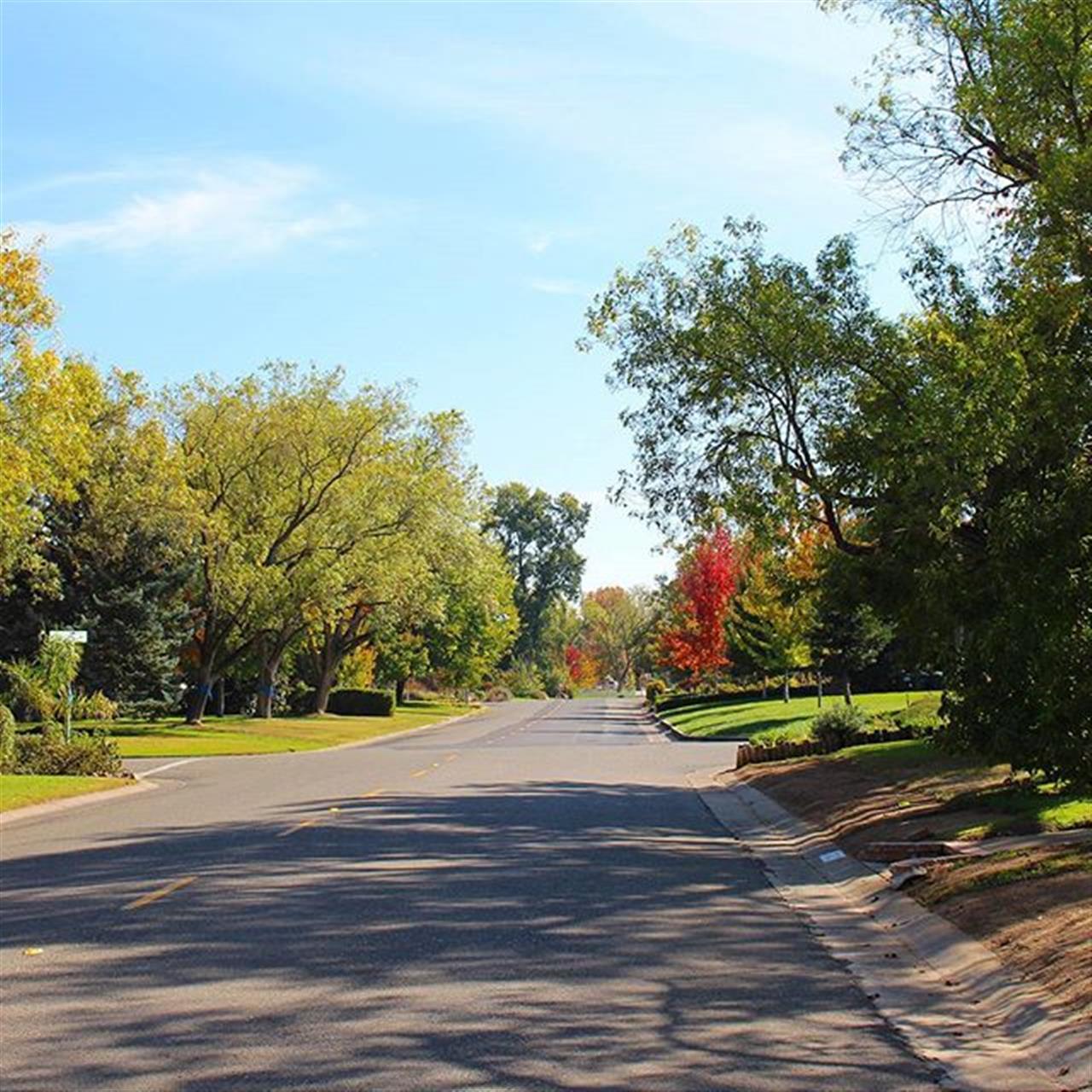Beautiful tree-lined streets of Arden Park. #lyonrealestate #leadingrelocal #sacramento #ardenpark